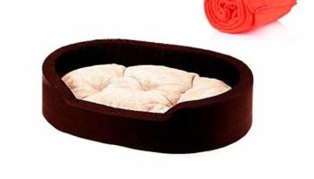 Gorgeous Soft Reversable Dual Bed for Dog and Cat (Brown and Cream, Small)
