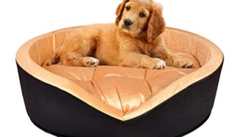 slatters be royal store Round Shape Reversable Dual Golden and Brown Color Ultra Soft Ethnic Velvet Bed for Dog/Cat Small