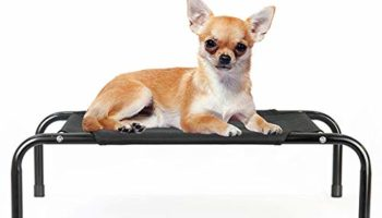 PetVogue Elevated Cooling Bed - Outdoor Elevated Bed for Dogs and Cats- Small