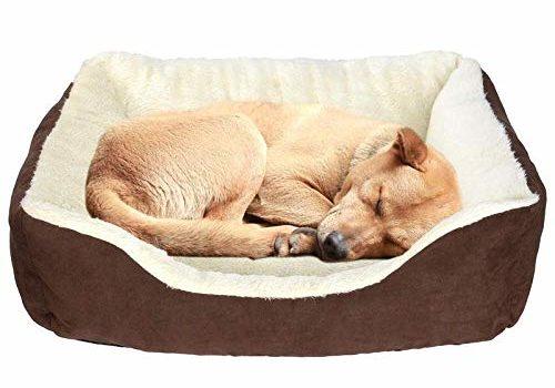 KOZI PET Reversible Dual Colour Ultra Soft Ethnic Velvet Bed for Dog and Cat (Large)