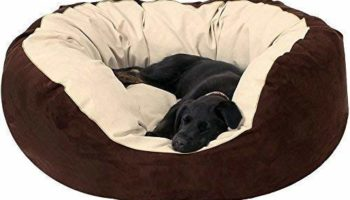 Gorgeous Quilted Reversible Ultra Soft Dual Sofa-Style Cream Brown Dog Bed -Medium