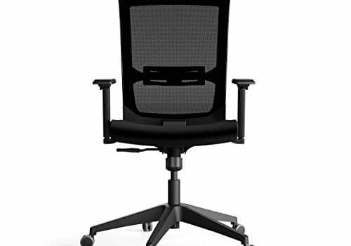 HNI India - Quip - Ergonomic Task Chair with Mesh Back & Adjustable Lumbar Support, PU Foam Seat Cushion with Adjustable Seat Height, Armrest & Synchronized Tilt Mechanism for Home Office Computer Table